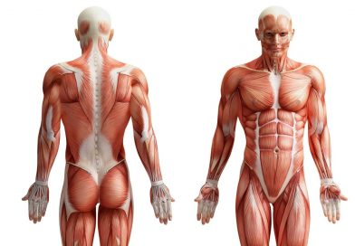 Can you answer these 15 anatomy questions?